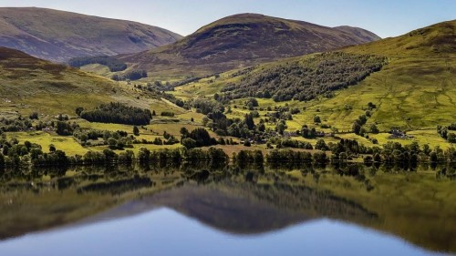 SCOTLAND COULD BECOME THE WORLD'S FIRST 'REWILDING NATION'. HOW DID THEY GET HERE?