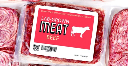 Patented Fake Meat Is All About Big Profits for Big Corporations — Not Health